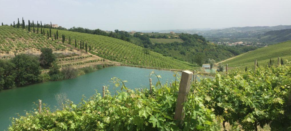 Su e giù per le colline tra Pescara e Teramo